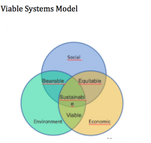 Viable Systems Approach